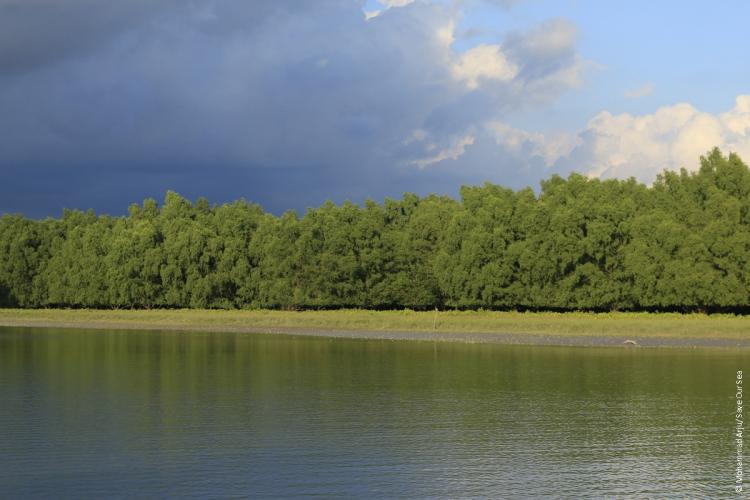 Sundarban East Wildlife Sanctuary