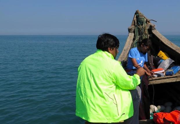 Save Our Sea Team