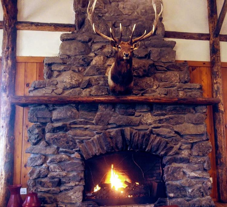 YMCY Estes Center Fireplace