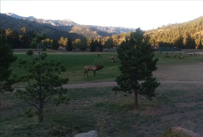 Elks a YMCA Estes Park