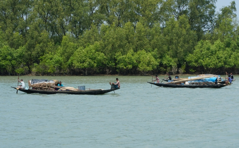 Fishers and honey collectors in the Sundarbans